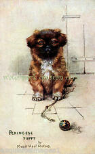 Antique Art~Cute Pekingese Puppy Dog by Maud West Watson~ New Large Note Cards