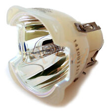 Projector Lamp Module for BENQ W6000
