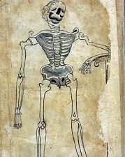 17th Century Persian Medical Skeleton Anatomy Illustration Canvas Art Print