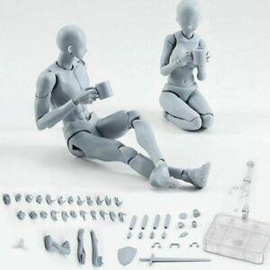 Upgrade Body Kun Doll PVC Body-Chan DX Action Play Art Figure Model Drawing AU