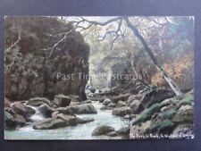 Ireland Co. Wicklow THE DARGLE ROCK Art by E. Longstaffe c1904 - Old Postcard