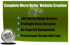 AdSense Approved SEO Optimized Niche Website An Easy $100 - $500+ Per Month