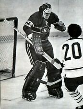 KEN DRYDEN GOALIE MONTREAL CANADIEN VS BUFFALO DON LUCE   HOCKEY PHOTO 8X11
