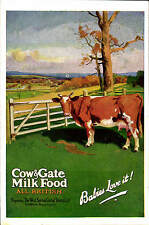 Advertising Poster Style. Cow & Gate Milk Food. West Surrey Dairy Co.,Guildford.