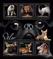 Azerbaijan Dogs Stamps 2017 MNH French Bulldog Dachshund Welsh Corgi 6v M/S I