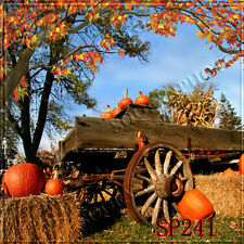 Halloween 10'x10'  Computer-painted Season Scenic background backdrop SP241B881