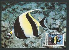 MALEDIVEN MK FISCHE FISH HALTERFISCH MOORISH IDOL CARTE MAXIMUM CARD MC CM m121