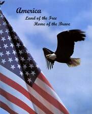 Land of the Free: Bald Eagle and American Flag - 8x10 In. Patriotic Art Print