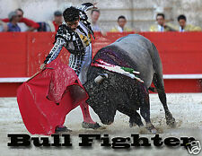 Animal Poster/Print/Bull Fighter/Tauromaquia/Matador/Spanish Torero/Mexico/17x22