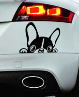 Peeping French Bulldog Very Cute Sneaky Frenchie Window Vinyl Decal Car Sticker
