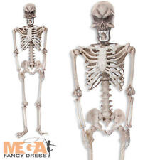 160cm Tall Large Hanging Skeleton Halloween Horror Fancy Dress Party Decoration