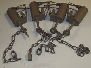 4 Powder Coated Duke DP Dog Proof Coon Traps Trapping Raccoon