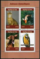 Chad 2019 CTO Domestic Animals Pets Cats Dogs Fish Parrots 4v M/S Stamps