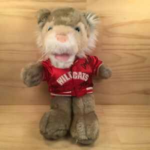 """HIGH SCHOOL MUSICAL """"Wild Cats"""" Awesome Movie Mascot Soft Toy Friend (Signed)"""