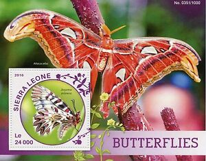 Sierra Leone 2016 MNH Butterflies 1v S/S Insects Festoon Atlas Moth Stamps