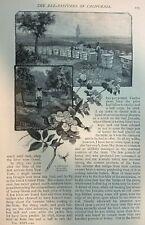 1882 John Muir Bee Pastures of California Part 2 illustrated