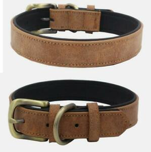 Dog Collars with Leash classic super fiber luxury dog with leash same colour