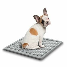 Potty Train Dog Indoor For Training Spotty Ugodog Tray environmentally friendly