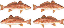 """New listing 4 Redfish stickerS 6"""" Cad Cut Free Shipping"""