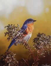 "Jim Hansel ""Eastern Bluebird"" Print  12"" x 16"""
