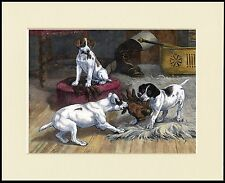 SMOOTH FOX JACK RUSSELL TERRIER PUPS AND GLOVE DOG PRINT MOUNTED READY TO FRAME
