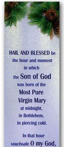 "24 Christmas ""Hail and Blessed"" Novena Bookmarks Imprimatur 1897 Starts Nov 30"