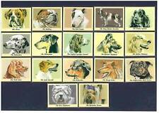 PERIKIM DOG CARDS -  ALL  17  DIFFERENT  SETS  !!