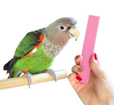 Parrot Nail Trimmer Stone from Parrot Wizard - Easy Parrot Claw Grooming