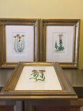 3 Framed Flower Art Pieces