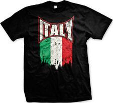 Italy Italian Flag Pride Red White Green Italiano Paisano Mens T-shirt