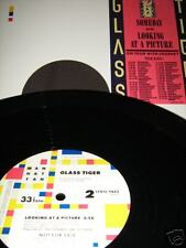 """GLASS TIGER Someday b/w Looking Picture 12"""" Single NM!"""
