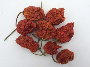 Trinidad Moruga Scorpion Dried Pods - The Hot Pepper Company