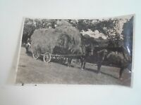 HAY TIME, Nostalgic Old Farming Photograph With Horses & Hay Cart §E2879