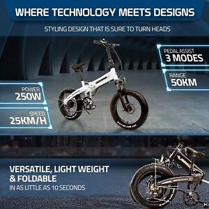 "Beach Rider 20"" ebike Foldable Mountain Electric Bicycle 250W LG Fat Tyre e-bike"