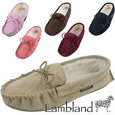 Standard (B) Width Suede Shoes for Women