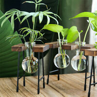 Terrarium Tabletop Wooden Frame Hydroponic Plant Vases Glass Vase Flower Pot