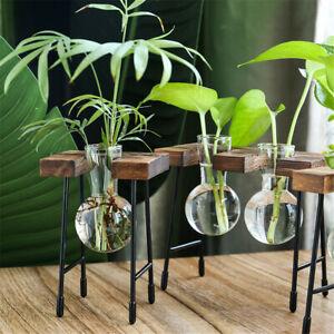 Terrarium Tabletop Wooden Frame Hydroponic Plant Vases Glass Vase Flower Pot