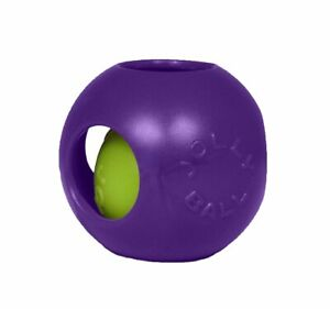 Jolly Pets Teaser Ball 8 inch Purple   Hard Plastic plus Squeaker Toy for Dogs
