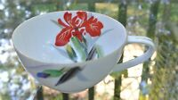 Beautiful Rossetti Hand Painted Cup Made in Japan