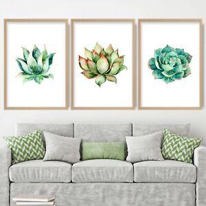 SET of 3 Watercolour Cactus Succulents Blue Green Orange Floral Art Prints ONLY