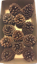 "12 PINE CONES Natural Medium 3 1/2"" - 4"" High ~ 2 1/2 - 3"" wide ~ Crafts"