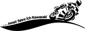 Aufkleber, Motorrad, Kawasaki, Beschriftung 40 x 15, alle Marken möglich, Auto