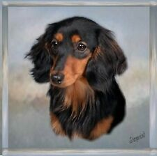 Dachshund (Long Haired) Coaster No 8 by Starprint