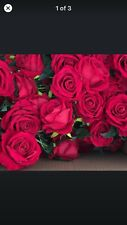 50 x artifical red rose on stem