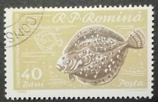 ROMANIA-RUMUNIA STAMPS - Fish, 1960, used, 40 Bani