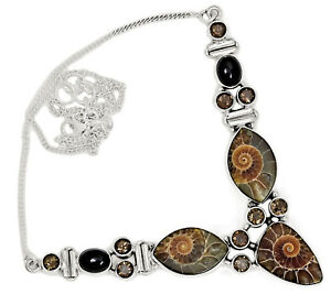 "25g ""Fossil"" Ammonite, Madagascar & Black Onyx 925 Silver Necklace SN18575"
