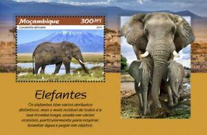 Mozambique - 2019 Elephants - Stamp Souvenir Sheet - MOZ190106b