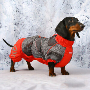 Tailored warm overall (jump suit) for Dachshunds - FEMALE