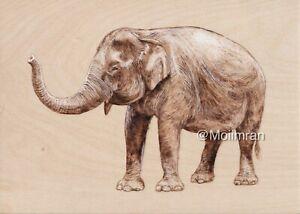 Elephant - Pyrography / Wood Burning Drawing Animal Portrait Wildlife Art Work