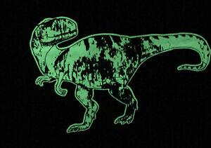 Hanna Andersson Boys LS Dinosaur Shirt 80 18-24 Months New Glow In The Dark